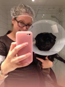 Du tar med hunden på hotell, av rehabiliteringshensyn ved operasjon.